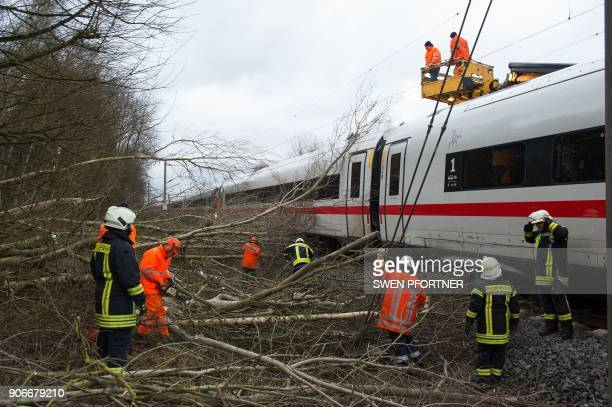 A picture taken on January 18 2018 near Lamspringe northern Germany shows firefighters removing trees which fell on an ICE highspeed train of German...