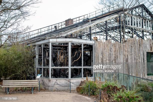 A picture taken on January 2 2020 shows a view of the burnedout monkey house at Krefeld zoo western Germany after a fire on New Year's Eve killed...
