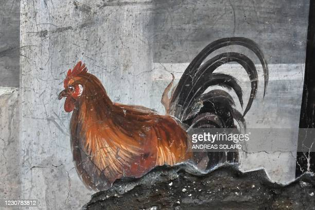 """Picture taken on January 25, 2021 shows a fresco decoration in the new area of the """"Thermopolium """" at the archaeological site of Pompeii, near..."""