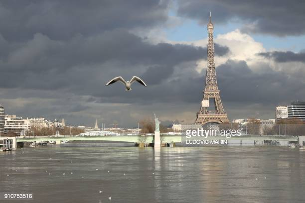 A picture taken on January 26 shows the flooded Ile aux Cygnes and banks of the river Seine with a model of the Statue of Liberty and the Eiffel...