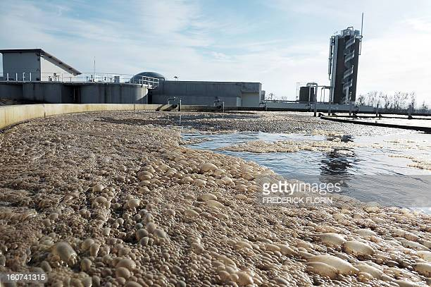 A picture taken on January 31 2013 in Meistratzheim near in Krautergersheim eastern France shows a sedimentation tank at a wastewater treatment plant...