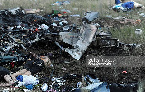 A picture taken on July 17 2014 shows bodies amongst the wreckages of the malaysian airliner carrying 295 people from Amsterdam to Kuala Lumpur after...