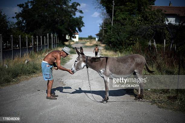 A picture taken on July 17 shows an elderly man feeding his donkey in the village of Kapitanovtsi located on the side of the Danube river bank The...