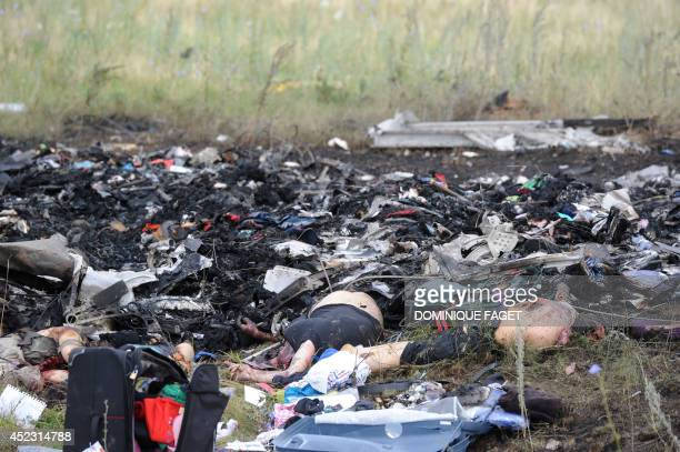 A picture taken on July 18 2014 shows a bodies amongst the wreckages of the Malaysia Airlines jet carrying 298 people from Amsterdam to Kuala Lumpur...