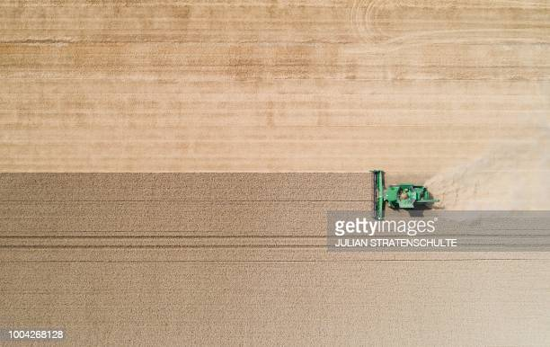 Picture taken on July 23, 2018 shows a farmer harvesting a wheat field with a combine harvester inear Hildesheim, northern Germany. / Germany OUT