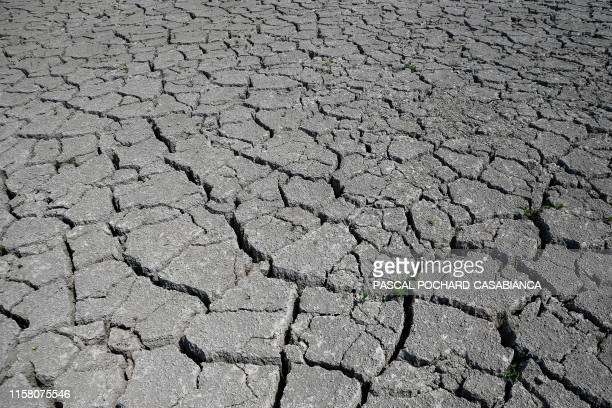 A picture taken on July 27 2019 shows dry land near Bastelicaccia on the French Mediterranean island of Corsica