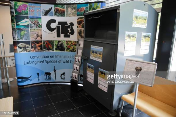 A picture taken on July 4 2018 shows a container of the Convention on International Trade in Endangered Species of Wild Fauna and Flora in Belgium...