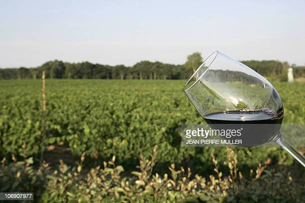 Picture taken on June 18 2008 showing a glass of red wine in front of the Chateau Smith Haut Lafitte vineyard in Leognan southwestern France Chateau...