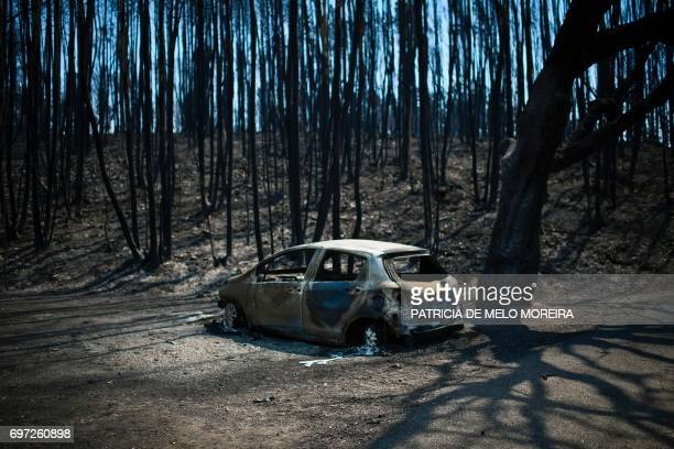 Picture taken on June 18, 2017 shows a car burnt in a forest devastated by a wildfire in Figueiro dos Vinhos. A wildfire in central Portugal killed...