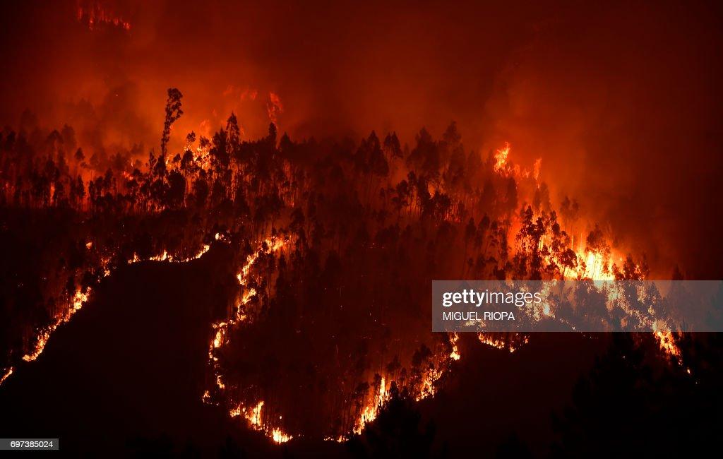 PORTUGAL-FIRE : News Photo