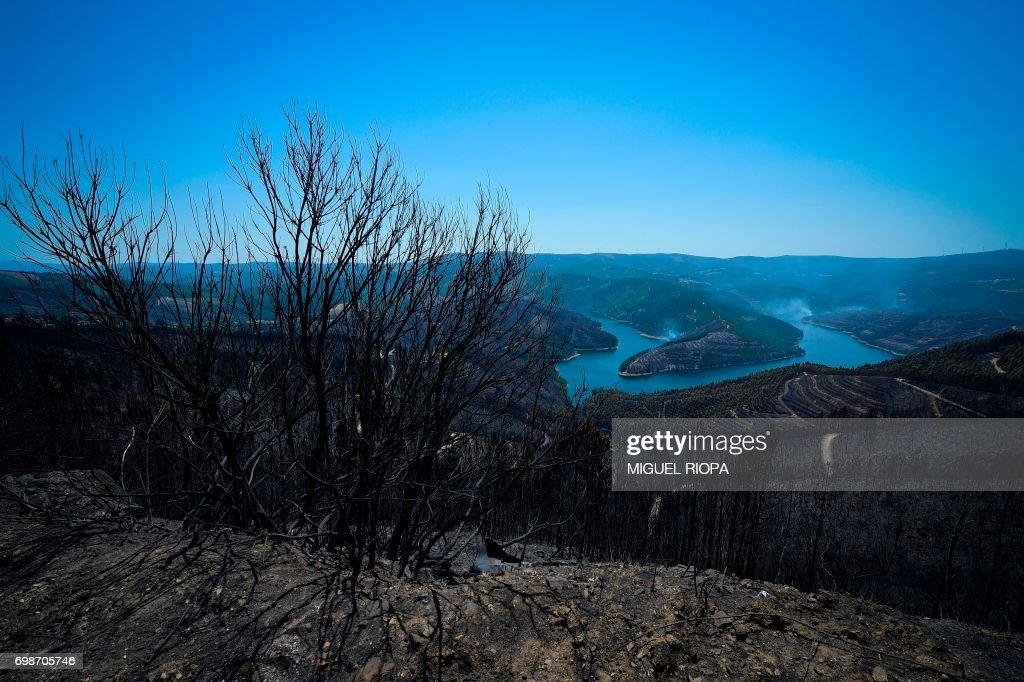 TOPSHOT - A picture taken on June 20, 2017 shows a burnt area of Vale do Cambra, some 30 km to Pedrograo Grande, after being affected by a forest wildfire. The huge forest fire that erupted on June 17, 2017 in central Portugal killed at least 64 people and injured 135 more, with many trapped in their cars by the flames. RIOPA