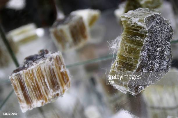 A picture taken on June 21 2012 shows raw asbestos in a disused asbestos' factory on June 21 in Caligny northwestern France This disused factory was...