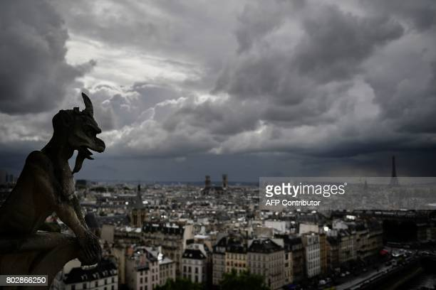 A picture taken on June 28 2017 shows gargoyles on the roof of NotreDame cathedral in Paris as the monument needs a huge restoration / AFP PHOTO /...