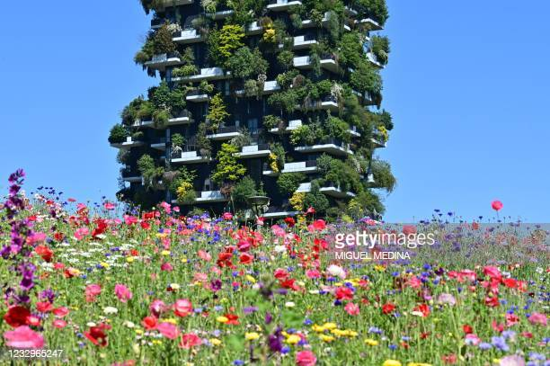 """Picture taken on Mai 18, 2021 from the botanic park """"Library of Trees"""" shows the Vertical Forest high-rise complex in the modern district of Porta..."""