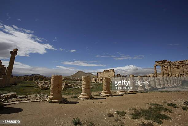 Picture taken on March 14, 2014 shows a partial view of the ancient oasis city of Palmyra, 215 kilometres northeast of Damascus. From the 1st to the...