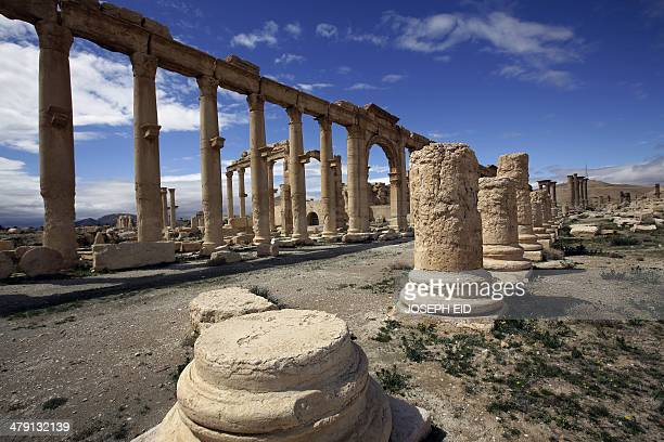 A picture taken on March 14 2014 shows a partial view of the ancient oasis city of Palmyra 215 kilometres northeast of Damascus Syria's fabled desert...