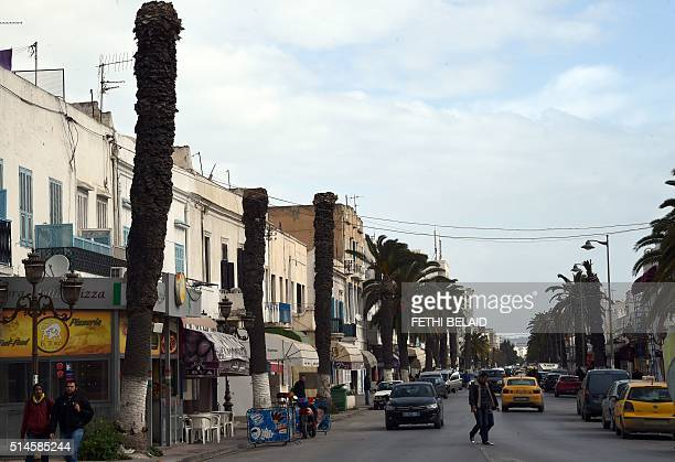 A picture taken on March 2 2016 on the outskirts of Tunis shows cars driving past palm trees infected by the red palm weevil Armed with insecticide...