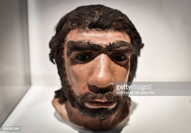 Picture taken on March 26, 2018 shows a moulding of a Neanderthal man face displayed for the Neanderthal exhibition at the Musee de l'Homme in Paris....