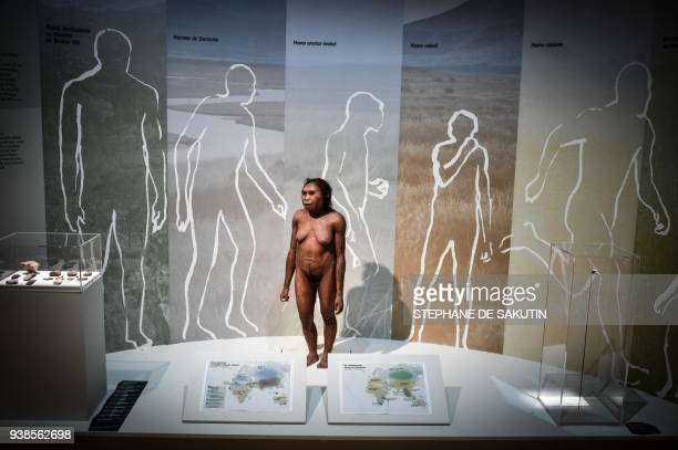 Picture taken on March 26, 2018 shows a thermoforming of a Flores woman displayed for the Neanderthal exhibition at the Musee de l'Homme in Paris. /...