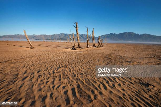 TOPSHOT A picture taken on May 10 2017 shows bare sand and dried tree trunks standing out at Theewaterskloof Dam which has less than 20% of it's...