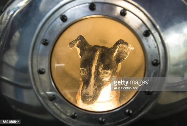 A picture taken on November 1 2017 shows an effigy of the dog Laika the first living creature in space inside a replica of satellite Sputnik II at...