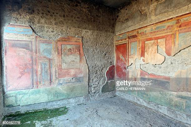 A picture taken on November 16 2016 shows a fresco in the Wounded Adon House that reopened to public after its restoration in the archaeological area...