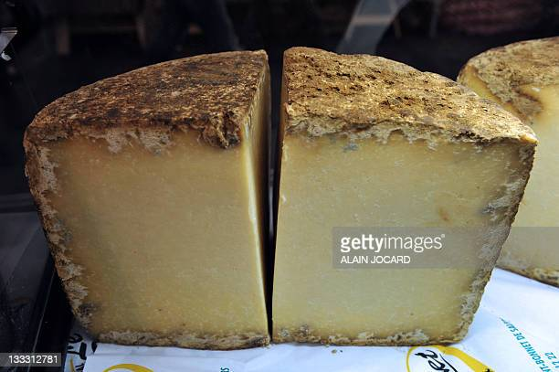 Picture taken on November 18, 2011 shows a Cantal cheese from France during the European bi-annual Eurogusto slow food festival in Tours, central...