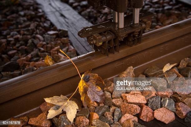 A picture taken on November 18 2016 shows a close up of the sleet brush used by a 'train brosseur' to clean the leaves fallen on the tracks on the...
