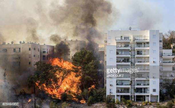 TOPSHOT A picture taken on November 24 2016 shows a bushfire raging in the northern Israeli port city of Haifa Hundreds of Israelis fled their homes...