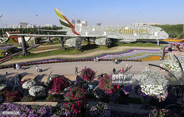 A picture taken on November 30 shows people walking past an Emirates Airbus A380 turned into a floral installation at the Dubai Miracle Garden / AFP...