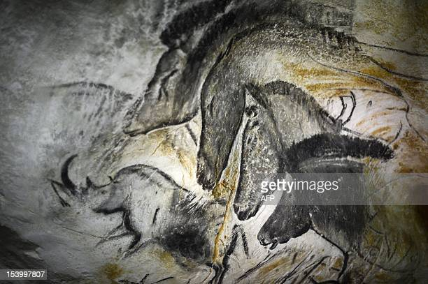 Picture taken on October 12, 2012 in Vallon-Pont-d'Arc of a prototype of painting of the facsimile of the Chauvet cave, which contains some of the...