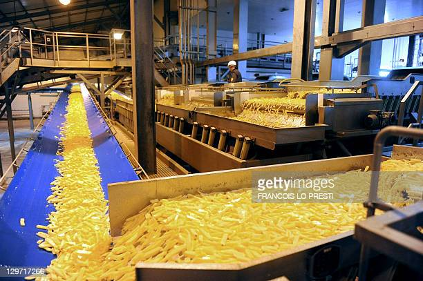 A picture taken on October 18 2011 shows the production line of French Fries at the Mc Cain factory in Harnes northern France AFP PHOTO FRANCOIS LO...