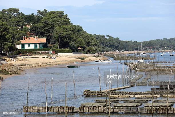A picture taken on October 19 2013 shows oyster beds at the CapFerret in the Arcachon basin in southwestern France AFP PHOTO / NICOLAS TUCAT