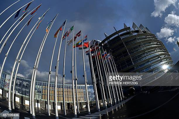 Picture taken on October 21 2014 of the European Parliament in Strasbourg eastern France during a plenary session AFP PHOTO / PATRICK HERTZOG
