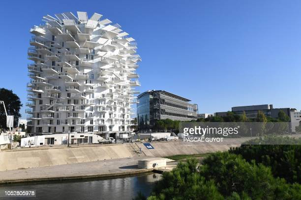 A picture taken on October 23 2018 in Montpellier southern France shows a building 'L'arbre blanc' designed by Japanese architect Sou Fujimoto and...