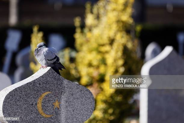 A picture taken on October 28 2012 shows muslim graves in the Muslim section at the municipal cemetery in Thiais south of Paris AFP PHOTO KENZO...