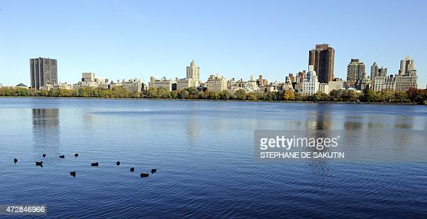 A picture taken on October 30 from Central Park a large public urban park in New York City AFP PHOTO STEPHANE DE SAKUTIN
