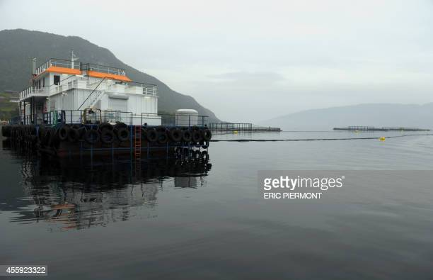 A picture taken on September 11 2014 in Indre Oppedal 100 km from Bergen shows the feedstation for the submerged salmons cages at a farm of Norwegian...