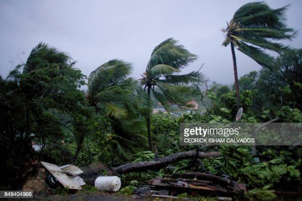 TOPSHOT A picture taken on September 19 2017 shows the powerful winds and rains of hurricane Maria battering the city of PetitBourg on the French...