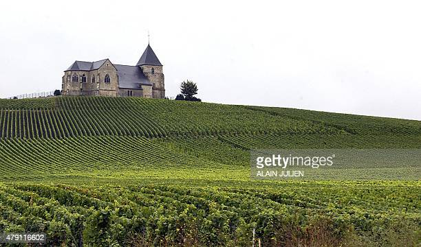 'CHAMPAGNE LA FRANCE DONNE SON 'FEU VERT' A L'EXTENSION DE L'APPELLATION' AND IN ENGLISH BY JORDANE BERTRAND 'FRANCE EXPANDS BOOMING CHAMPAGNE...