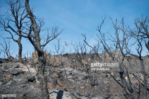 A picture taken on September 3 2017 in La LondelesMaures southeastern France shows a Dash firefighting plane flying over a burnt area after a forest...