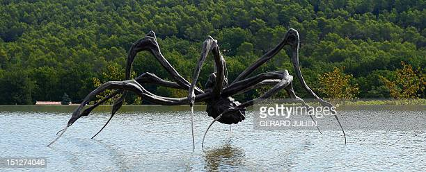 BRUMONT A picture taken on September 5 2012 shows Crouching Spider by Louise Bourgeois presented at the Art Center of Chateau la Coste at Le...