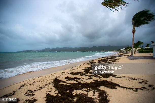 TOPSHOT A picture taken on September 5 2017 shows a view of the Baie Nettle beach in Marigot with the wind blowing ahead of the arrival of Hurricane...