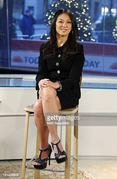 Amy Chua appears on NBC News' 'Today' show Photo by Peter Kramer/NBC/NBC NewsWire