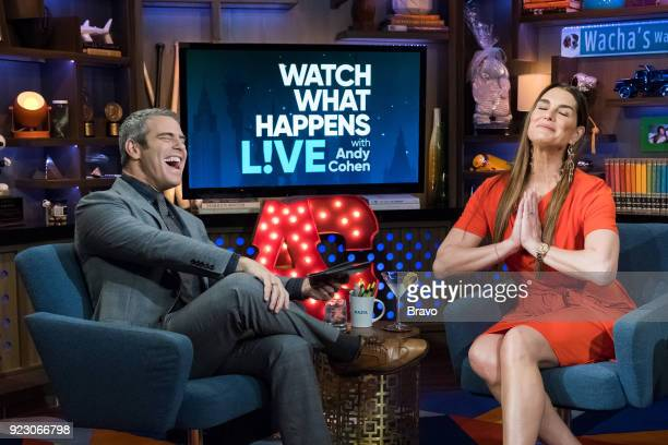 Andy Cohen and Brooke Shields