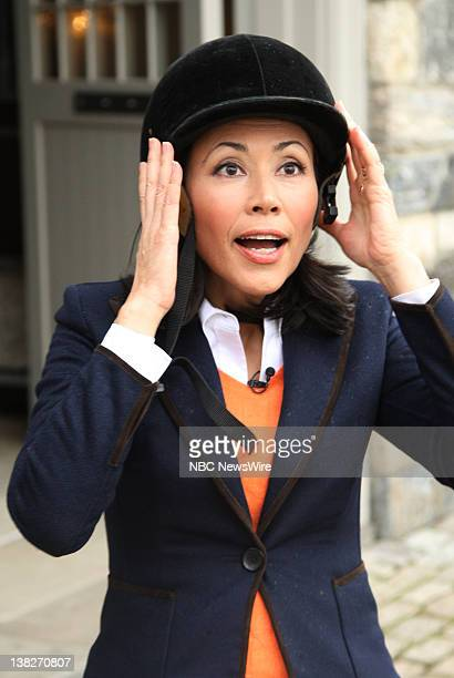 Ann Curry appears on NBC News' Today show