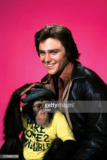 Pictured: Bear the chimpanzee, Greg Evigan as Billy Joe 'BJ' McKay