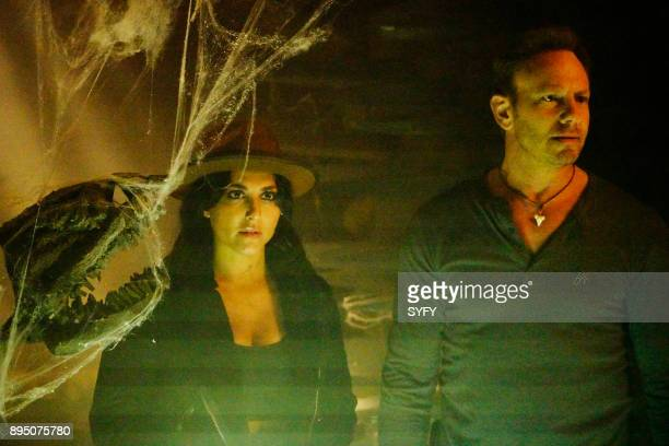 Cassie Scerbo as Nova Clark Ian Ziering as Fin Shepard