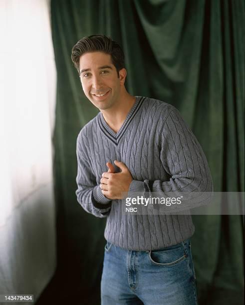 David Schwimmer as Ross Geller