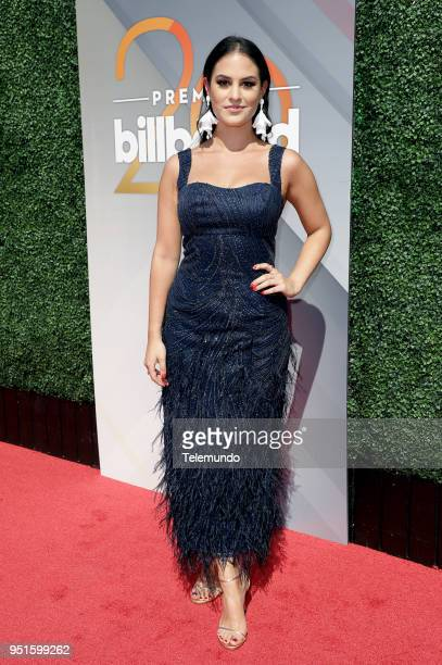 Donna Farizan on the red carpet at the Mandalay Bay Resort and Casino in Las Vegas NV on April 26 2018
